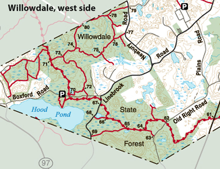 willowdale_west_ecta
