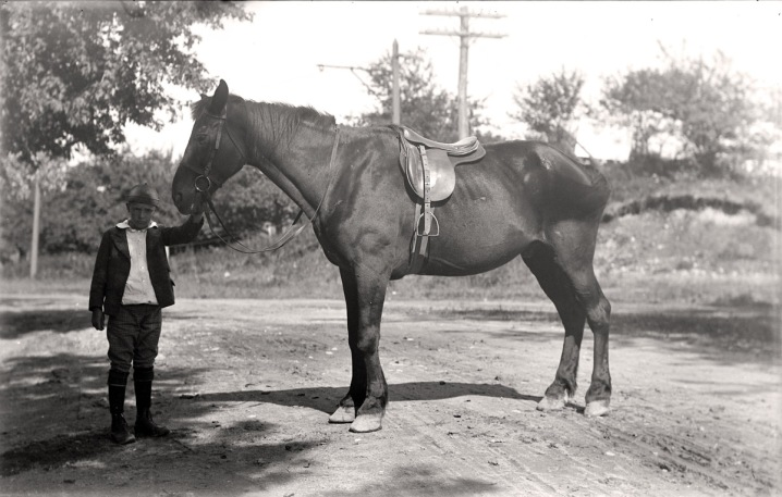 Boy with horse, early photos from Ipswich Massachusetts