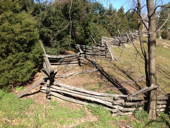 Worm fence in Colonial Williamsburg