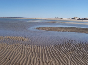 Ripples in the sand at Crane Beach