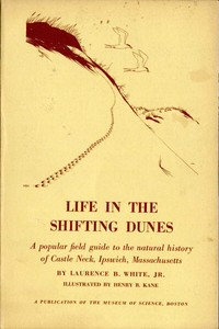 Life in the Shifting Dunes