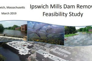 Ipswich Mills Dam Removal Feasibility Study