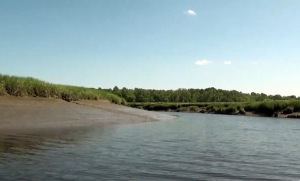 Rowley River clam flats