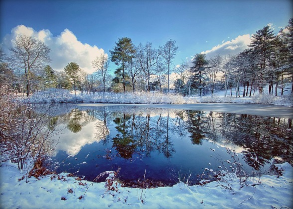 Pond on ICC by Bill Congdon