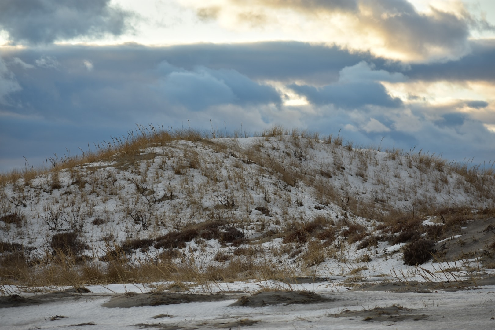 Ipswich dunes at Castle Neck. Photo by Sharon Scarlata