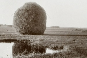 Hay stack in the salt marsh